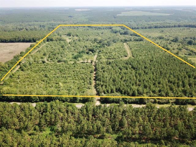 107 Acres S County Road 6 ., Black, AL 36314 (MLS #456803) :: Team Linda Simmons Real Estate