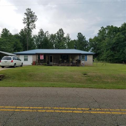 5020 County Road 514 ., Elba, AL 36323 (MLS #457357) :: Team Linda Simmons Real Estate