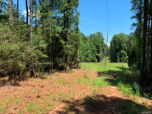 55 acres Tom Fain Road, Geneva, AL 36340 (MLS #458791) :: Team Linda Simmons Real Estate