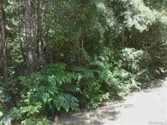 TBD Logan Road, Ozark, AL 36360 (MLS #458993) :: Team Linda Simmons Real Estate