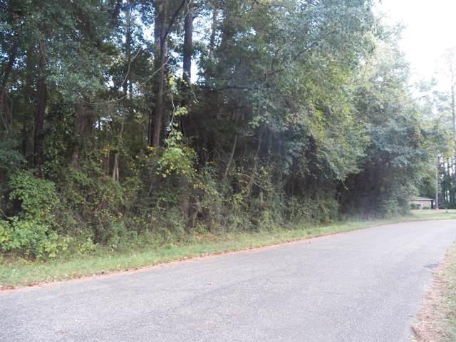 0 Pinedale Drive, Elba, AL 36323 (MLS #461242) :: Team Linda Simmons Real Estate