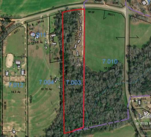 10.8 Acres County Road 73 ., Slocomb, AL 36375 (MLS #463561) :: Team Linda Simmons Real Estate