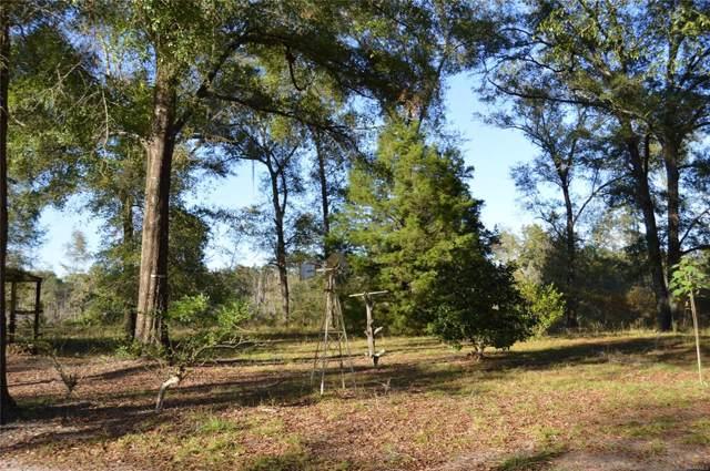 192 Maloy Road, Daleville, AL 36322 (MLS #463615) :: Team Linda Simmons Real Estate