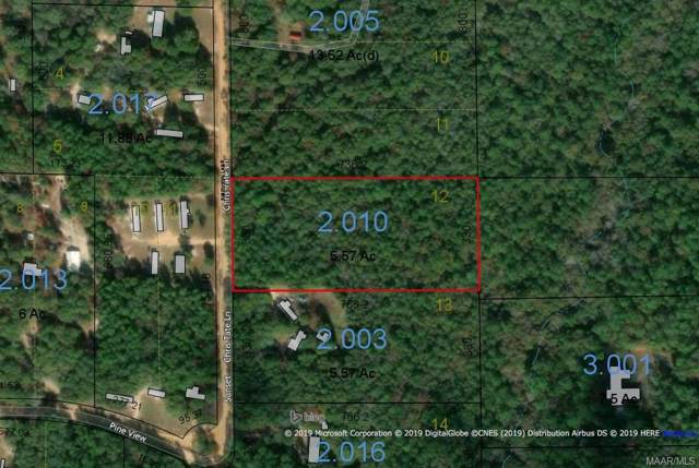 5.57 Acres Pineview Lane, Samson, AL 36477 (MLS #464714) :: Team Linda Simmons Real Estate