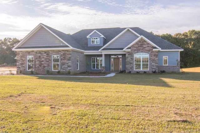 5153 Highway 51 Highway, New Brockton, AL 36351 (MLS #464839) :: Team Linda Simmons Real Estate