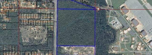 000 Highway 85, Cairn Airfield Road Road, Daleville, AL 36322 (MLS #464964) :: Team Linda Simmons Real Estate