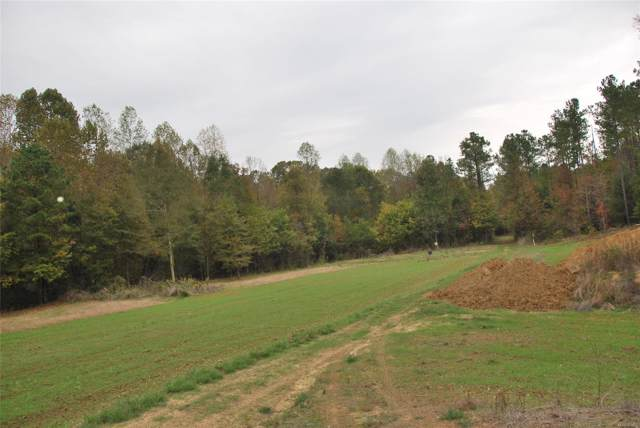 1260 Marlowe Road, Panola, AL 36041 (MLS #464989) :: Buck Realty
