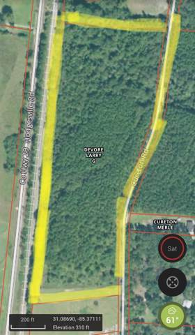 11446 S County Road 33 Road, Dothan, AL 36301 (MLS #465004) :: Team Linda Simmons Real Estate