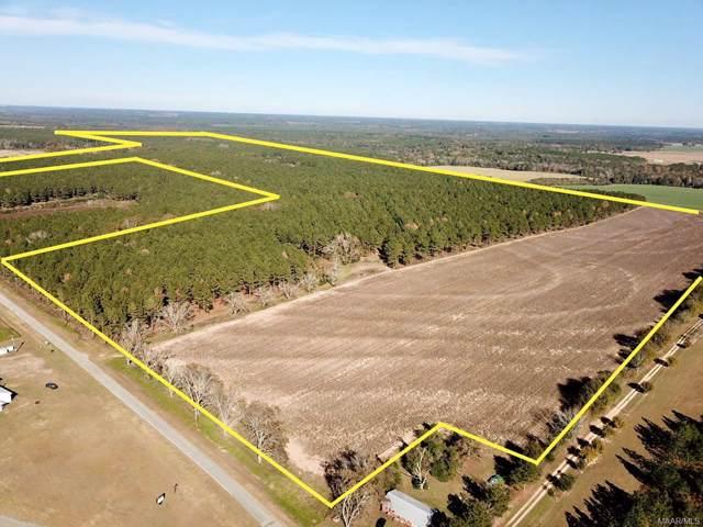 327 acres County Road 57, Hartford, AL 36344 (MLS #465671) :: Team Linda Simmons Real Estate