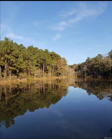 13 Acres County Road 1 ., Daleville, AL 36322 (MLS #467334) :: Team Linda Simmons Real Estate
