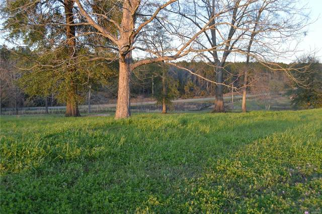 LOT 45 County Road 561 Road, Enterprise, AL 36330 (MLS #469440) :: Team Linda Simmons Real Estate
