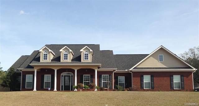 384 County Road 163, New Brockton, AL 36351 (MLS #470140) :: Team Linda Simmons Real Estate