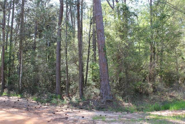 000 S Ward Street, Geneva, AL 36340 (MLS #470333) :: Team Linda Simmons Real Estate