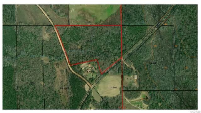 25.6 Acres County Road 19, Skipperville, AL 36374 (MLS #470648) :: Team Linda Simmons Real Estate