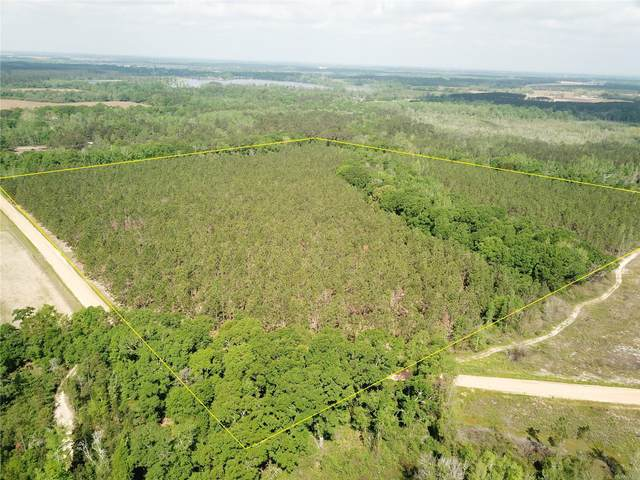 40 Acres Bonner Road, Hartford, AL 36344 (MLS #470716) :: Team Linda Simmons Real Estate