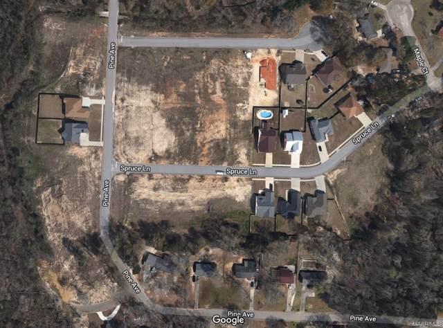 00 Sandy Hill Court, Ozark, AL 36360 (MLS #471184) :: Buck Realty