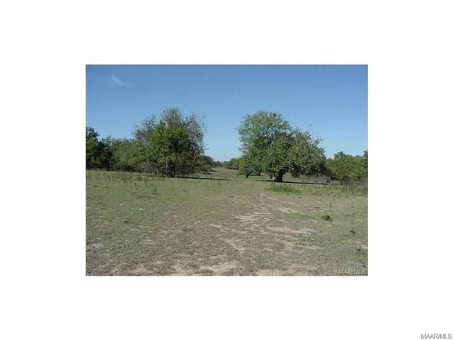 0 Mingo Bracey Road, Hayneville, AL 36040 (MLS #471410) :: Buck Realty