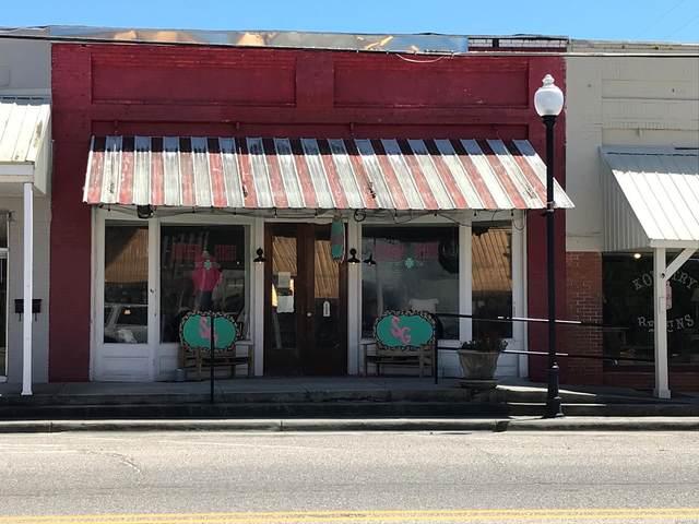 102 E Main Street, Samson, AL 36477 (MLS #472039) :: Team Linda Simmons Real Estate