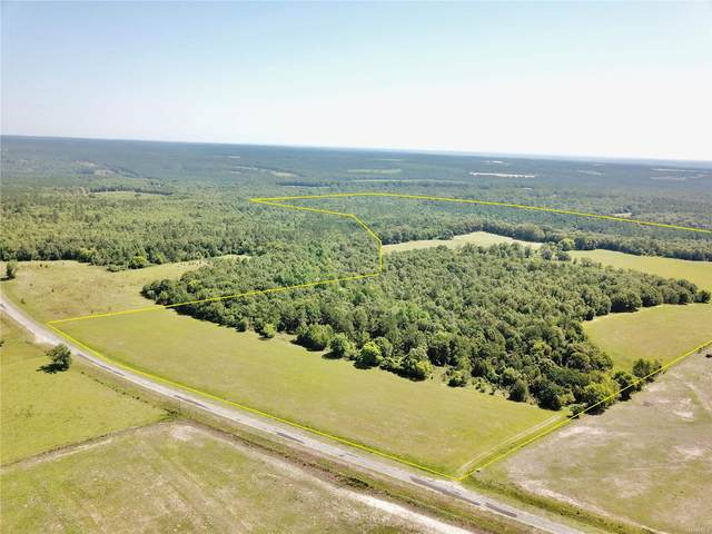 169 acres County Road 101 Road, Abbeville, AL 36310 (MLS #474794) :: Team Linda Simmons Real Estate