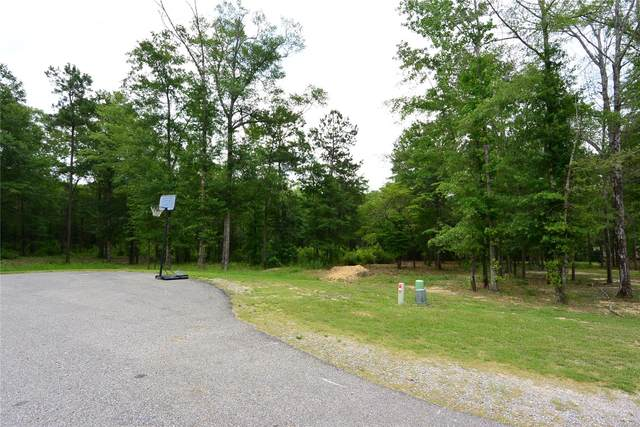 50 River Stone Court, Eclectic, AL 36024 (MLS #474902) :: Buck Realty