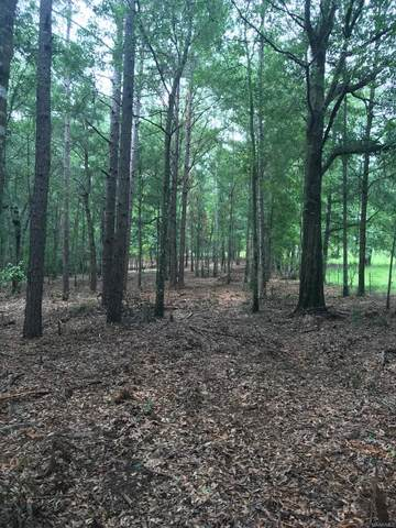 4406 County Road 364, Elba, AL 36323 (MLS #476307) :: Team Linda Simmons Real Estate