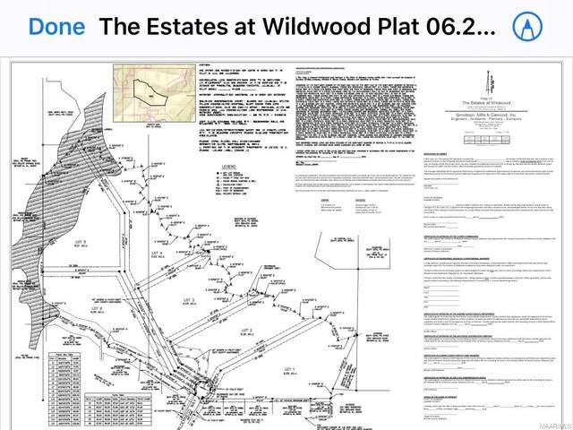 132 Wilderness Way, Wetumpka, AL 36093 (MLS #476671) :: Buck Realty