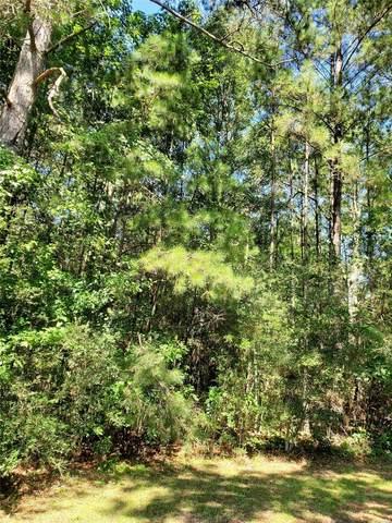 TBD County Road 107, Ariton, AL 36311 (MLS #476808) :: Team Linda Simmons Real Estate