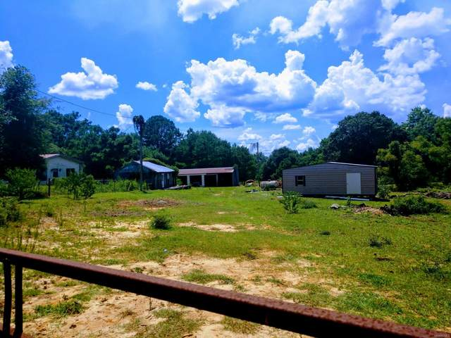 24631 and 24687 Highway 87, Elba, AL 36323 (MLS #476810) :: Team Linda Simmons Real Estate