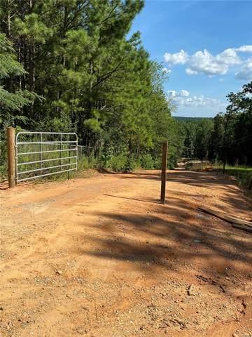 1988 Davies Drive, Prattville, AL 36067 (MLS #476848) :: Buck Realty