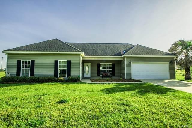 2199 County Road 107 Road, Hartford, AL 36340 (MLS #478283) :: Team Linda Simmons Real Estate