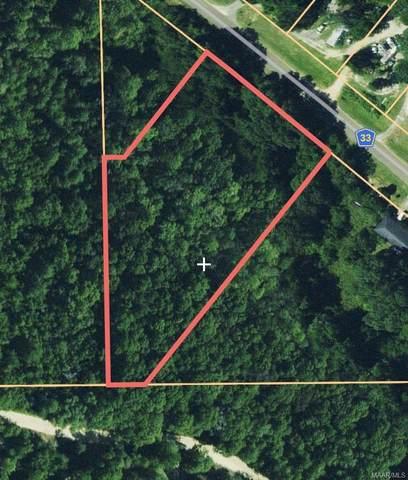 0 Skyline Avenue, Geneva, AL 36340 (MLS #478327) :: Team Linda Simmons Real Estate