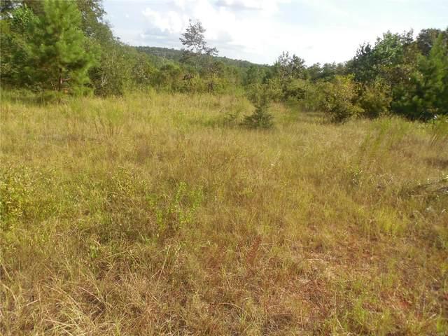 9.8 acres Whittle Hudson Road, Ozark, AL 36360 (MLS #478524) :: Team Linda Simmons Real Estate