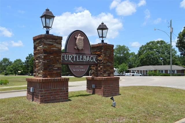 410 Turtleback Trail, Enterprise, AL 36330 (MLS #478684) :: Buck Realty