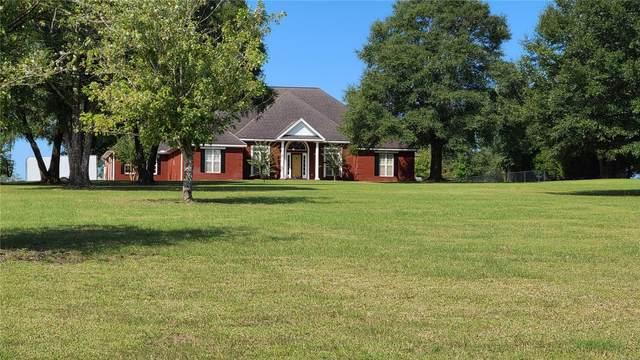 1685 N Highway 123, Newton, AL 36352 (MLS #479473) :: Team Linda Simmons Real Estate