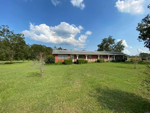 1021 County Road 173 Road, Newville, AL 36353 (MLS #479683) :: Team Linda Simmons Real Estate