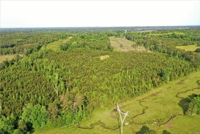 72 County Road 94, Pine Level, AL 36065 (MLS #479897) :: Buck Realty