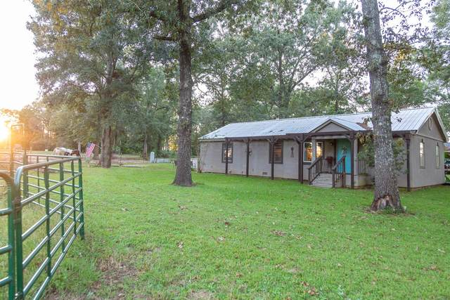 179 Perry Sellers Road, Hartford, AL 36344 (MLS #481459) :: Team Linda Simmons Real Estate