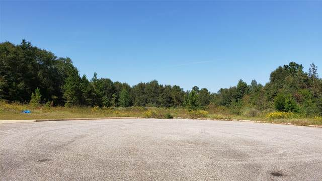 00 Cedar Grove Lane, Enterprise, AL 36330 (MLS #481740) :: Team Linda Simmons Real Estate