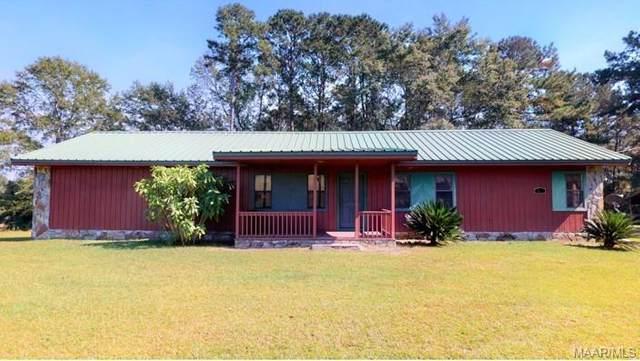 346 County Road 349 Road, Elba, AL 36323 (MLS #482203) :: Team Linda Simmons Real Estate