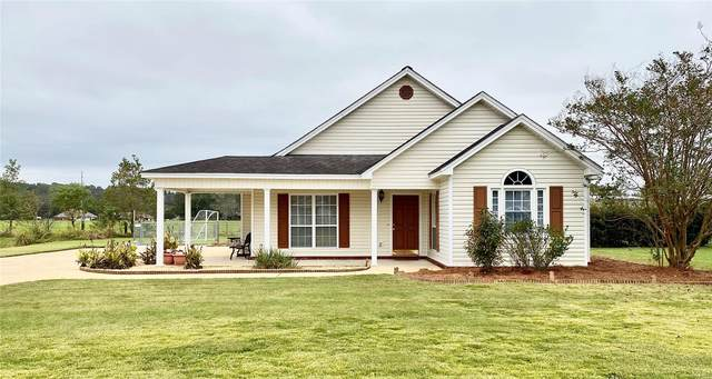 125 N Springfield Drive, Millbrook, AL 36054 (MLS #482355) :: Buck Realty