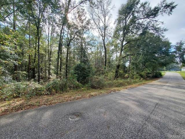 344 Oak Hill Drive, Ozark, AL 36360 (MLS #483880) :: Team Linda Simmons Real Estate