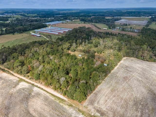 28927 Pine Oak Road, Opp, AL 36467 (MLS #483976) :: Team Linda Simmons Real Estate