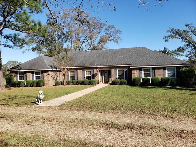 1480 County Road 65, Valley Grande, AL 36701 (MLS #484180) :: Buck Realty