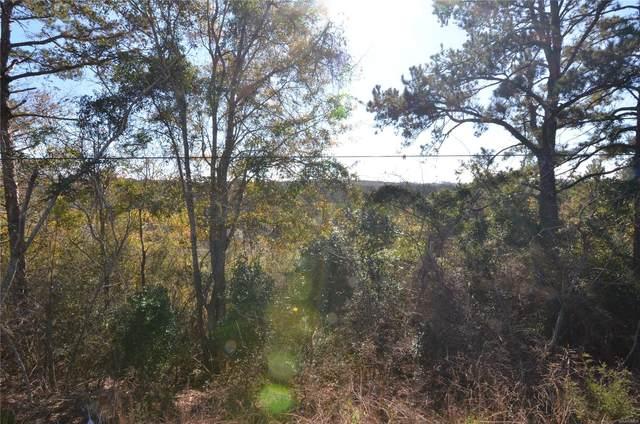 0 Highway 125, Elba, AL 36323 (MLS #485801) :: Team Linda Simmons Real Estate