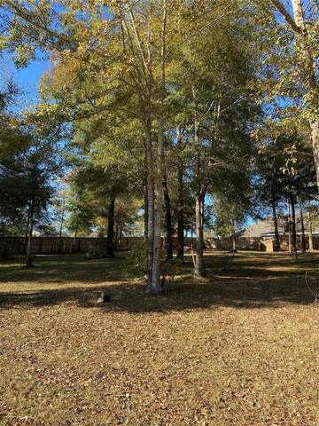 203 Rockin Chair Court, Enterprise, AL 36330 (MLS #485963) :: LocAL Realty
