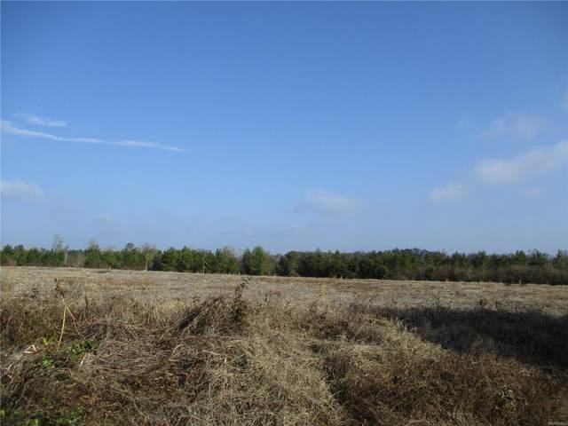 Lot 3 County Road 20, Ozark, AL 36360 (MLS #486475) :: Team Linda Simmons Real Estate