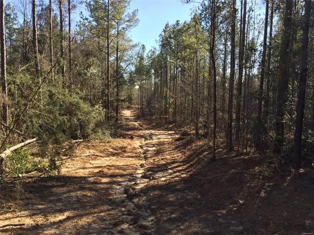 128 +/- Acres County Road 216, Ariton, AL 36311 (MLS #486687) :: Team Linda Simmons Real Estate