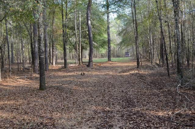 584 Indian Hills Drive, Elmore, AL 36092 (MLS #486802) :: Buck Realty