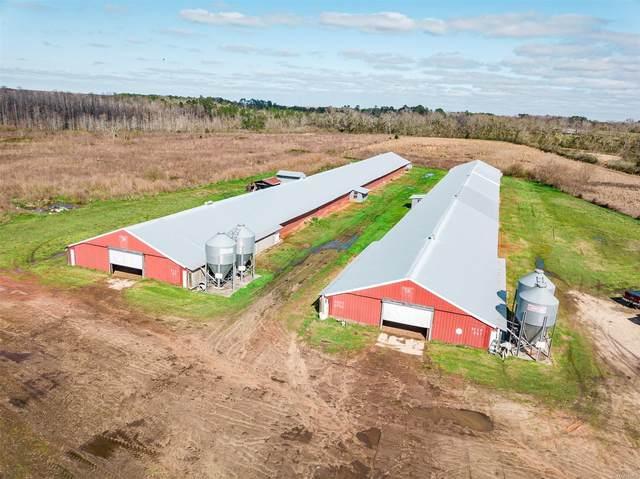 4407 County Road 105, Hartford, AL 36344 (MLS #490424) :: Team Linda Simmons Real Estate