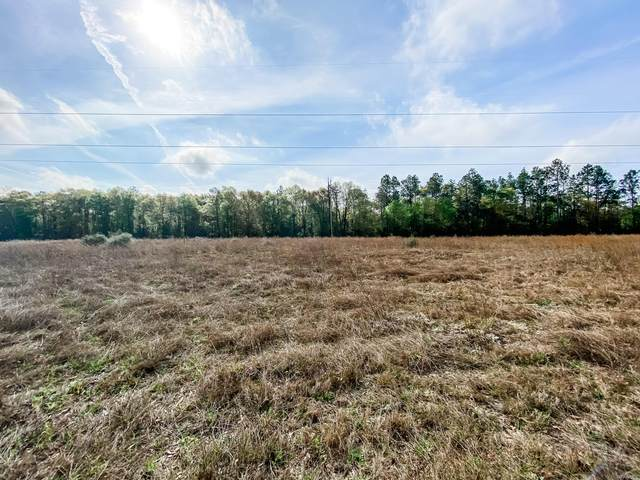 0 Open Pond Road, Samson, AL 36477 (MLS #491379) :: Buck Realty